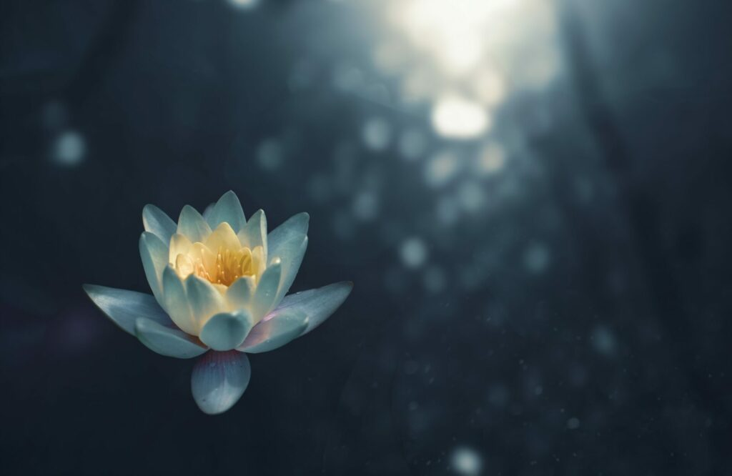Meditation can help confine yourself to the present